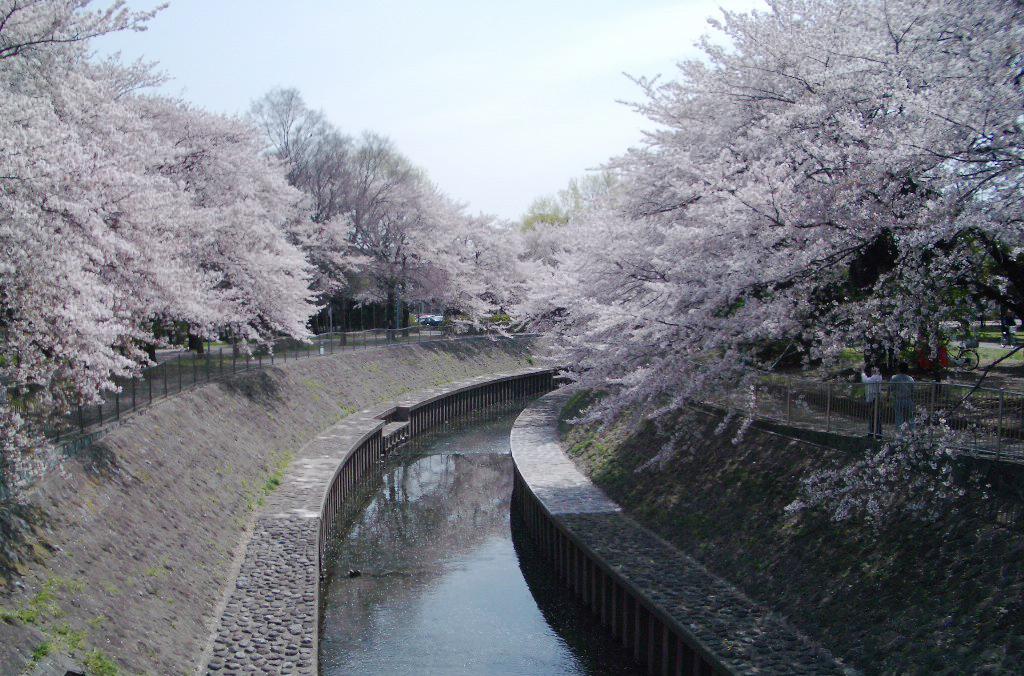 zenpukujigawa