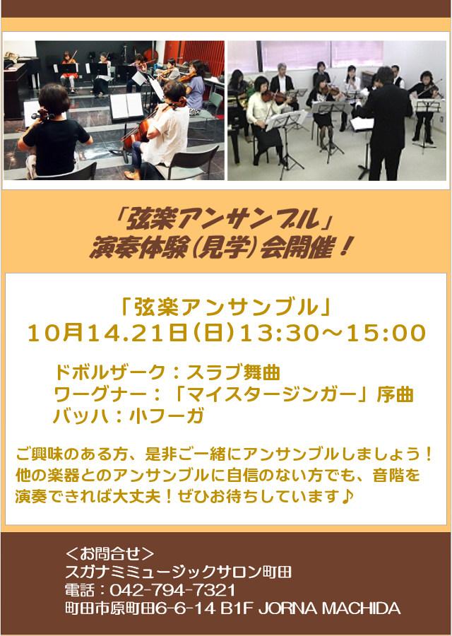 スガナミミュージックサロン町田弦楽アンサンブル・バイオリン、ビオラ、コントラバス、メンバー募集!